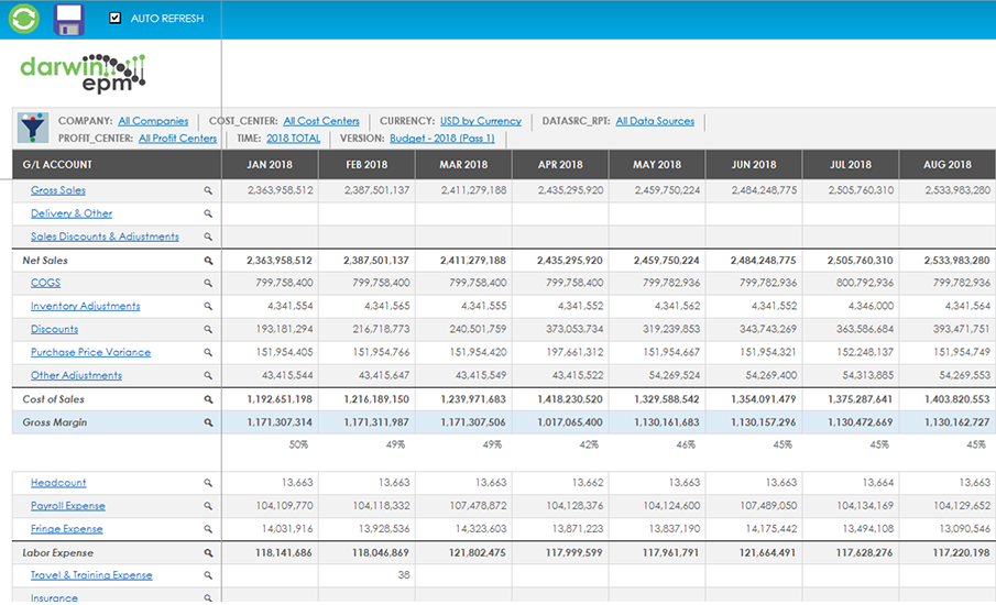P&L and cash flow forecasting